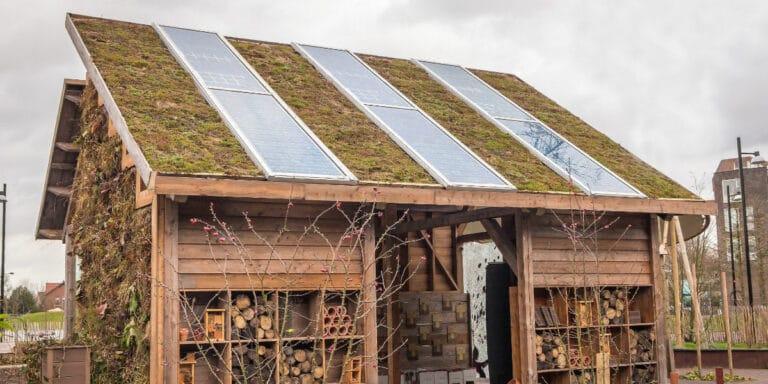 panneaux solaires abri jardin